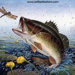 Aug Bass