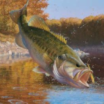 Oct Bass